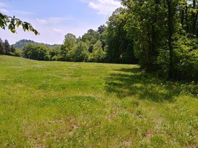Hancock County Single Family Home For Sale: 535/720 Carroll Road