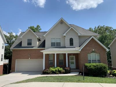 Knoxville Single Family Home For Sale: 4408 Platinum Drive