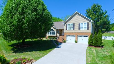 Knoxville Single Family Home For Sale: 1500 One Friday Lane