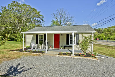 Knoxville Single Family Home For Sale: 6912 W Martin Mill Pike