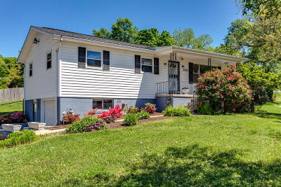 Knoxville Single Family Home For Sale: 2109 Sanderson Rd