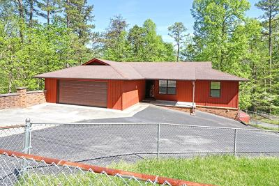 Strawberry Plains Single Family Home For Sale: 9419 Jim Loy Rd