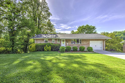 Anderson County Single Family Home For Sale: 524 Greenwood Drive