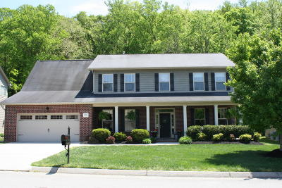 Knoxville Single Family Home For Sale: 11634 Edison Rd
