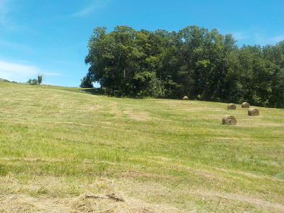 Blaine Residential Lots & Land For Sale: Lot 3 Brown Road
