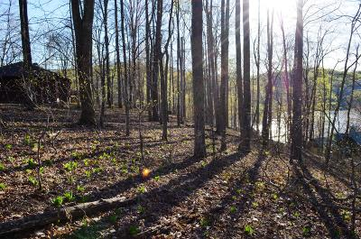 Lafollette Residential Lots & Land For Sale: Deer Run Circle