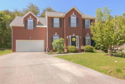 Knoxville Single Family Home For Sale: 3423 Rocky Path Lane
