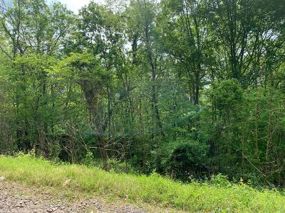 Residential Lots & Land For Sale: 123 Norris Shores Drive