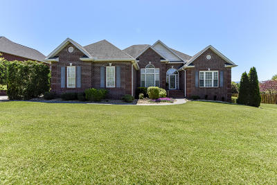 Maryville Single Family Home For Sale: 3719 Colonel Jim Drive