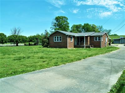Maryville Single Family Home For Sale: 544 Chilhowee View Rd