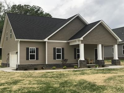 Blount County Single Family Home For Sale: 1917 Farris Rd