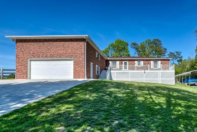 Lafollette Single Family Home For Sale: 291 McCarty Rd