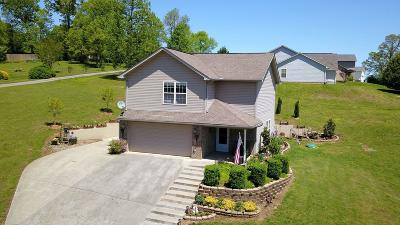 Blount County Single Family Home For Sale: 1424 Chessingham Drive