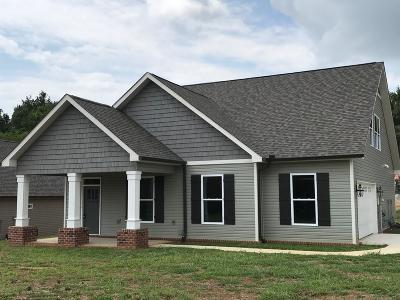 Maryville Single Family Home For Sale: 1925 Farris Rd
