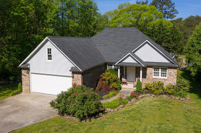 Loudon Single Family Home For Sale: 101 Chanusi Way