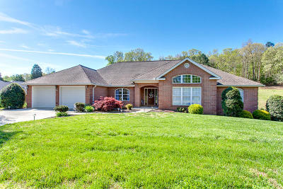 Sevierville Single Family Home For Sale: 143 Gallahad Court