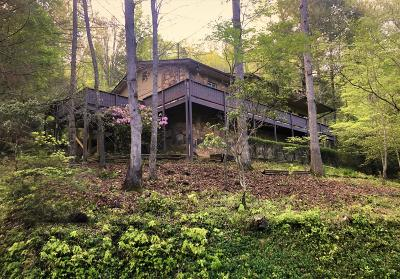 Gatlinburg Single Family Home For Sale: 328 Gatlin Drive