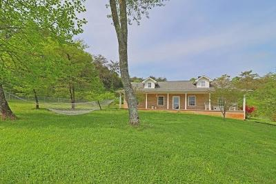 Strawberry Plains Single Family Home For Sale: 161 Barber Rd