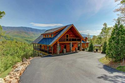 Gatlinburg Single Family Home For Sale: 1010 Mathis Hollow Rd