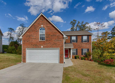 Knoxville Single Family Home For Sale: 7644 Misty View Lane