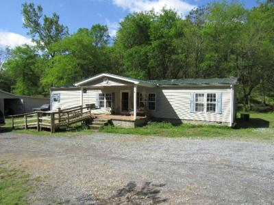 Single Family Home For Sale: 375 Trace Creek Rd