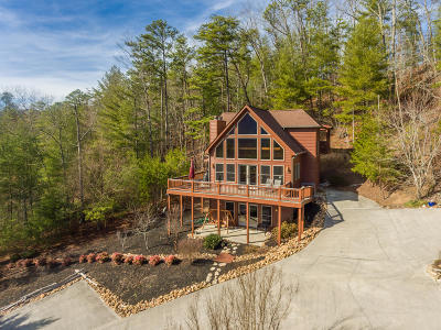 Townsend TN Single Family Home For Sale: $425,000