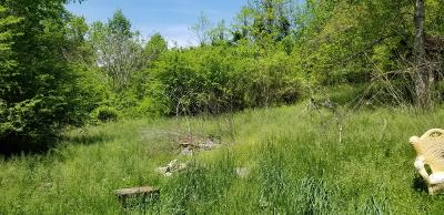 Corryton Residential Lots & Land For Sale: 8620/8614 Old Tazewell Pike