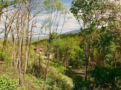 Gatlinburg Residential Lots & Land For Sale: 506 Greenbriar Lane