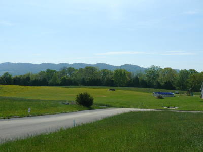 Claiborne County Residential Lots & Land For Sale: Lot 36 Imogene Lane