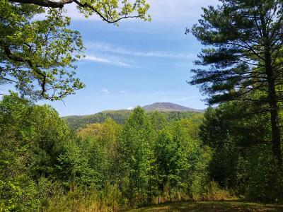 Tellico Plains Residential Lots & Land For Sale: 5.20 Acres Smithfield Road