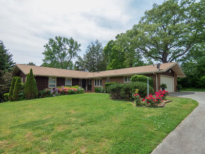 Knoxville Single Family Home For Sale: 8605 Wimbledon Drive