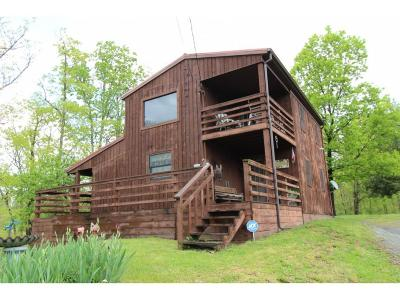 Single Family Home For Sale: 199 Chock Creek Rd