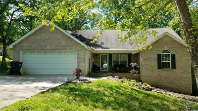 Knoxville Single Family Home For Sale: 117 Way Station Tr