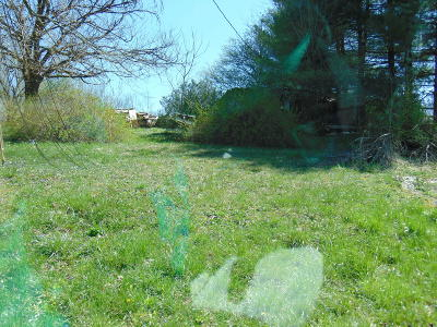 Cumberland Gap Residential Lots & Land For Sale: 637 Arthur Rd.