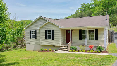 Caryville Single Family Home For Sale: 237 Patty Hill Rd