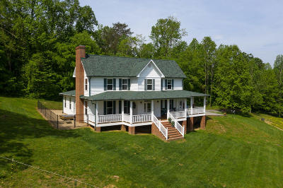 Walland Single Family Home For Sale: 2845 Old Chilhowee Rd