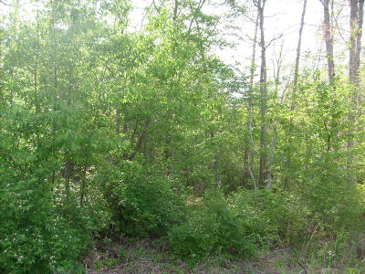 Residential Lots & Land For Sale: 8509 Cherokee Tr