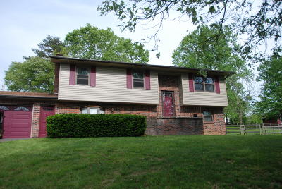 Claiborne County Single Family Home For Sale: 185 River Rd