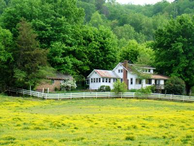 Sevier County Commercial For Sale: 4201 Wears Valley Road