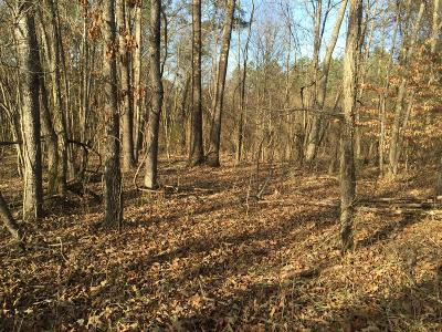 Blount County Residential Lots & Land For Sale: 1510 Johnathan Drive