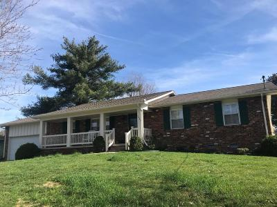 Knoxville Single Family Home For Sale: 1247 Lovell View Drive
