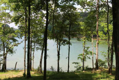 Meigs County, Rhea County, Roane County Residential Lots & Land For Sale: 135 Edgewater Way
