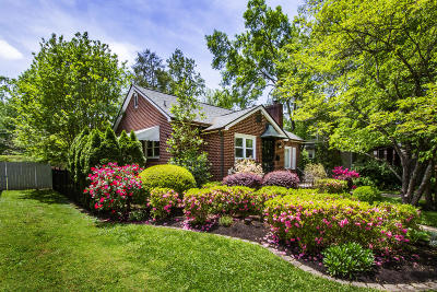 Knoxville Single Family Home For Sale: 2038 Island Home Blvd