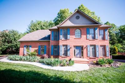 Knoxville Single Family Home For Sale: 313 Axton Drive