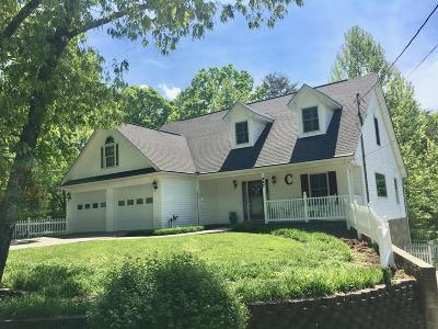 Pigeon Forge Single Family Home For Sale: 447 Sharon Drive