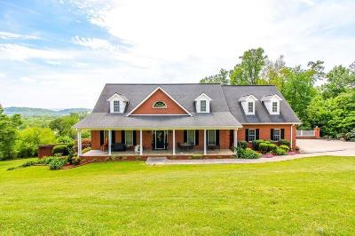 Tazewell Single Family Home For Sale: 285 Bello Rd