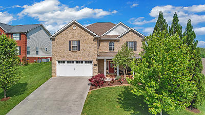 Knoxville Single Family Home For Sale: 10341 Ivy Hollow Drive