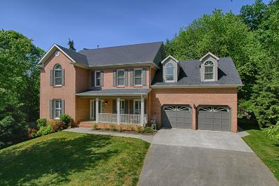 Knoxville Single Family Home For Sale: 929 Shade Tree Lane