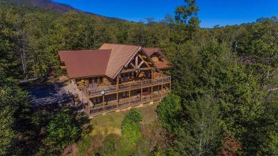 Gatlinburg Single Family Home For Sale: 427 Coyote Rd