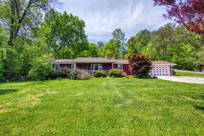 Sevierville Single Family Home For Sale: 3006 Lona Drive